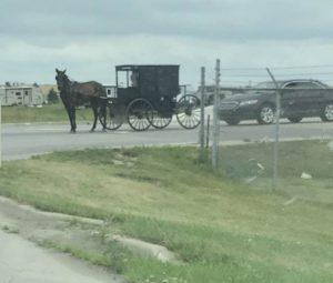 AmishCaronDynamicsImplementation